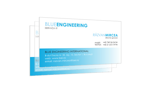 Blue Engineering International
